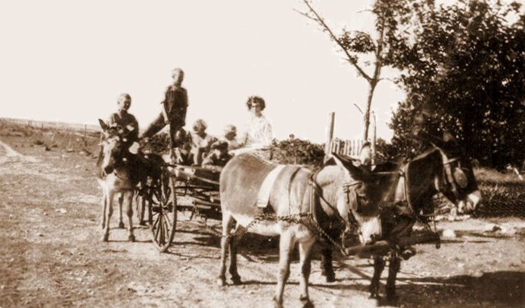 1929 school bus at the Ranch:  Vernon, Marion, Ewalee, (Marco in cap?), Sherrill, and the teacher Cleo Heidel (our future Aunt Cleo)