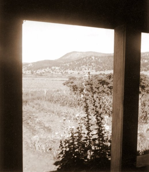 1945-08-01 Looking WNW from the  front porch on the Harland farm near Biscuit Hill