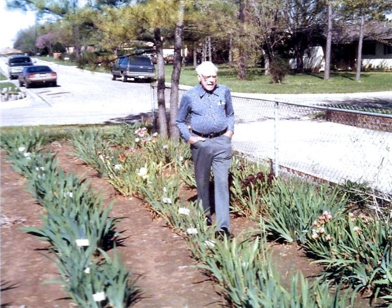Rudi in his iris garden, March 1985  (the last bloom season before his death)