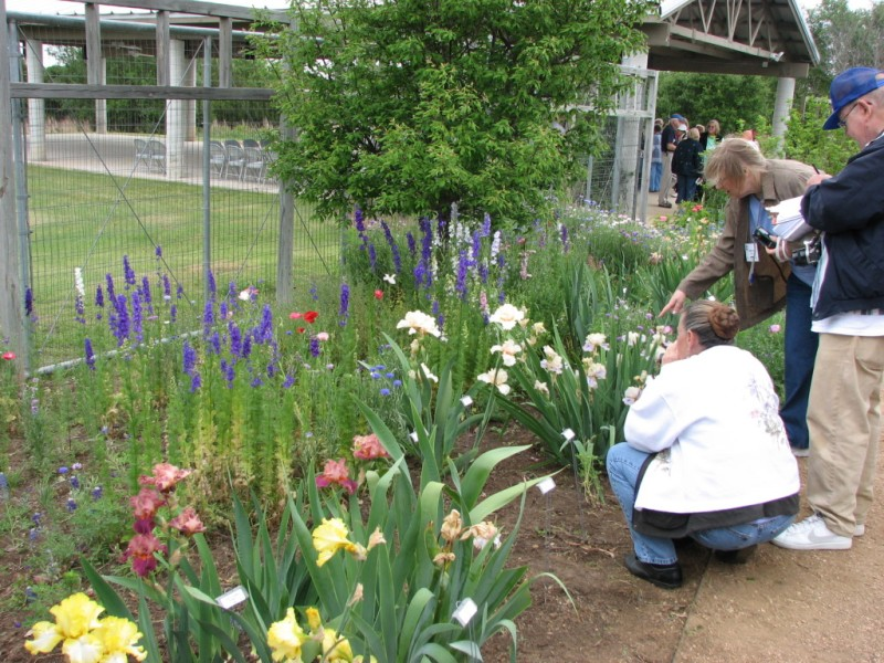 Shirley Trio gets a close-up view of some guest irises