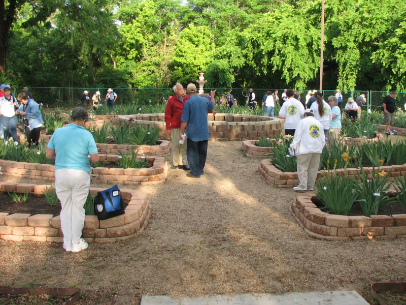 Lee Schroeder and Tom Burseen discuss the irises in the San Marcos Tourist Information Center Garden